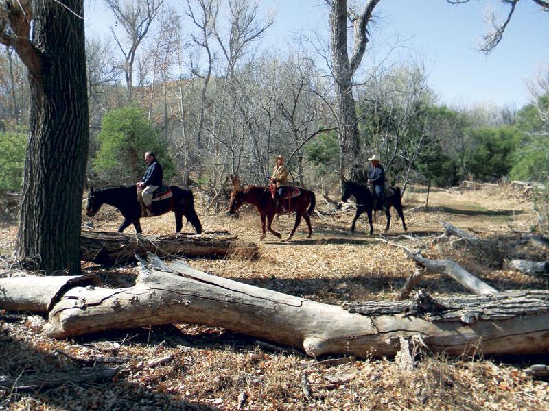 Photo by Laurie Davies  horseback riding at Circle Z Ranch