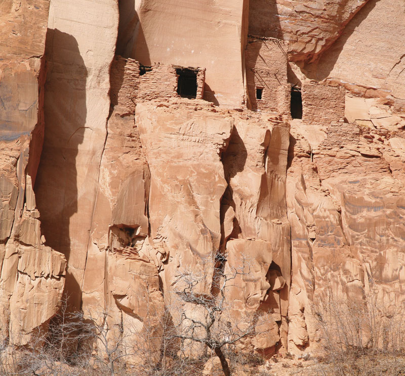 Roughly 120 Pueblo Indians occupied Betatakin before vacating the site in the early 1300s.