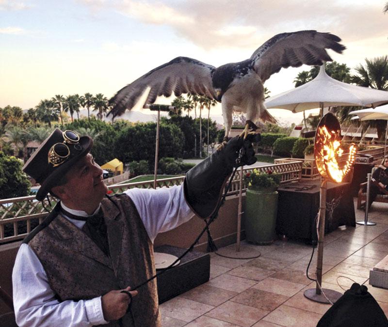 Master falconer Robby Sinkler handling his understudy
