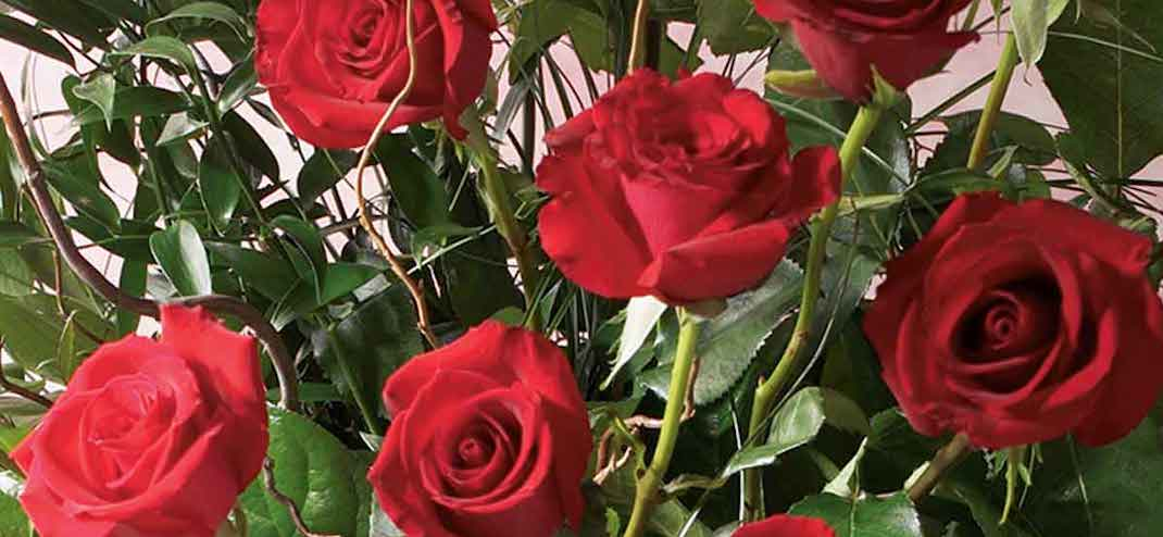 https://www.phoenixmag.com/wp-content/uploads/2017/02/Roses_from_AJs_Fine_Foods.jpg