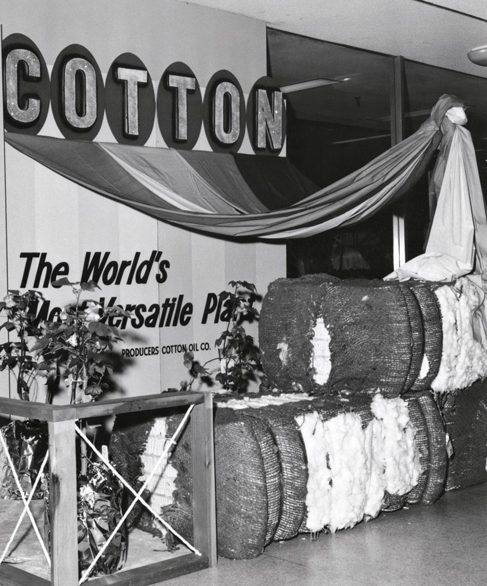 Cotton Week exhibit, 1961