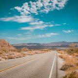 Friday Flicks: Road Trip Edition