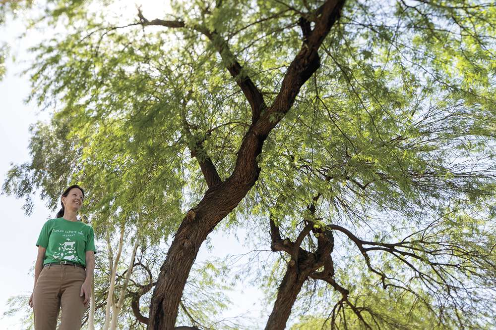 Sandy Bahr, head of the Arizona Sierra Club, at Wesley Bolin Plaza in Downtown Phoenix, believes additional tree shade can cool the urban heat island.