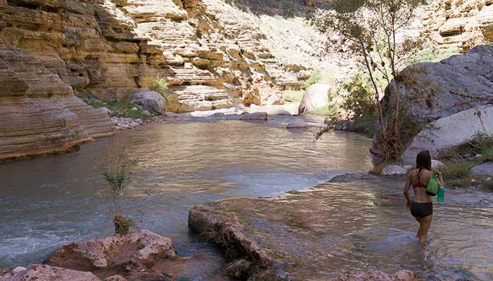 Havasu Canyon01
