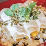 Squash Enchilada