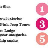 Millenium Pink