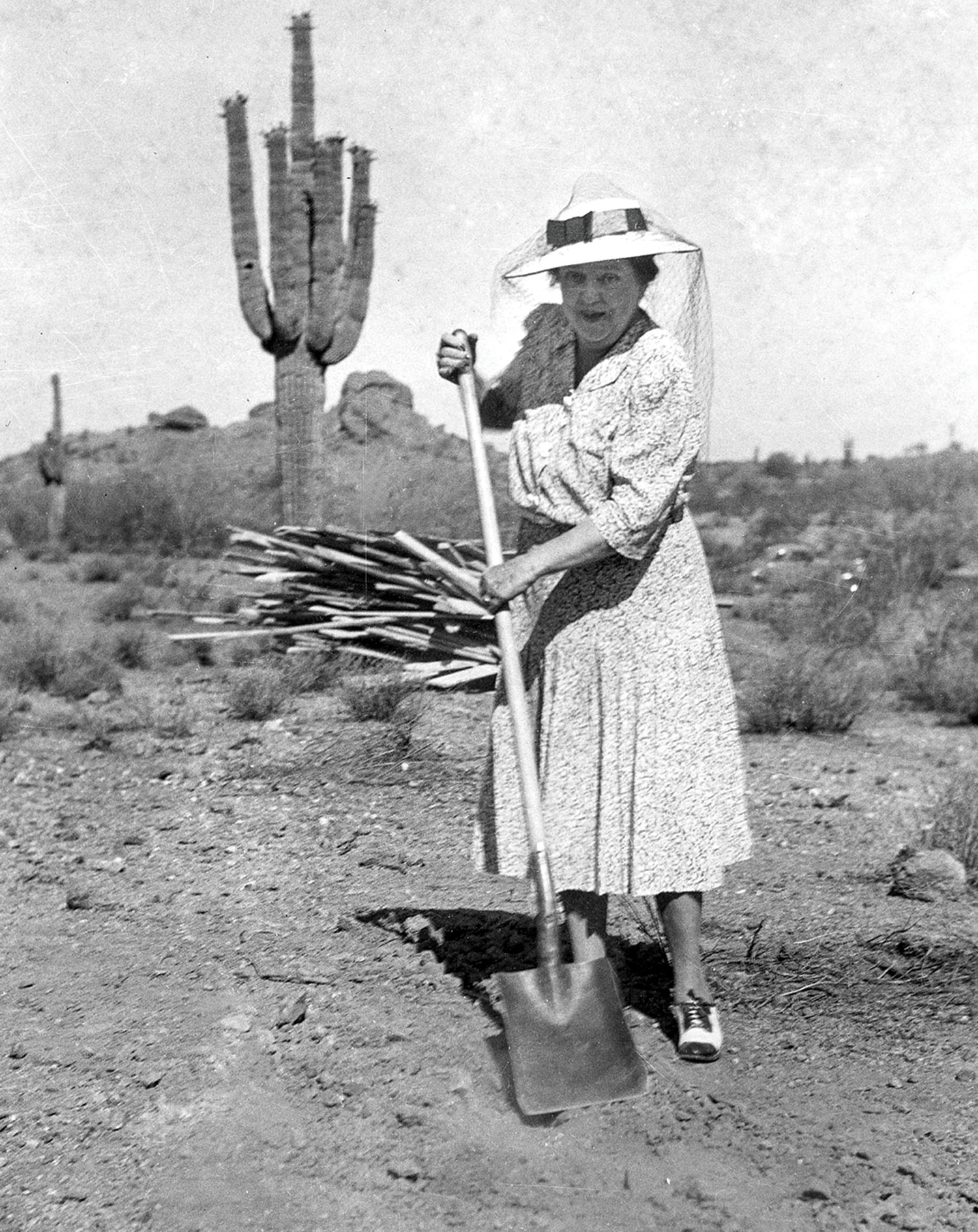photos courtesy Desert Botanical Garden; Gertrude Webster in 1939