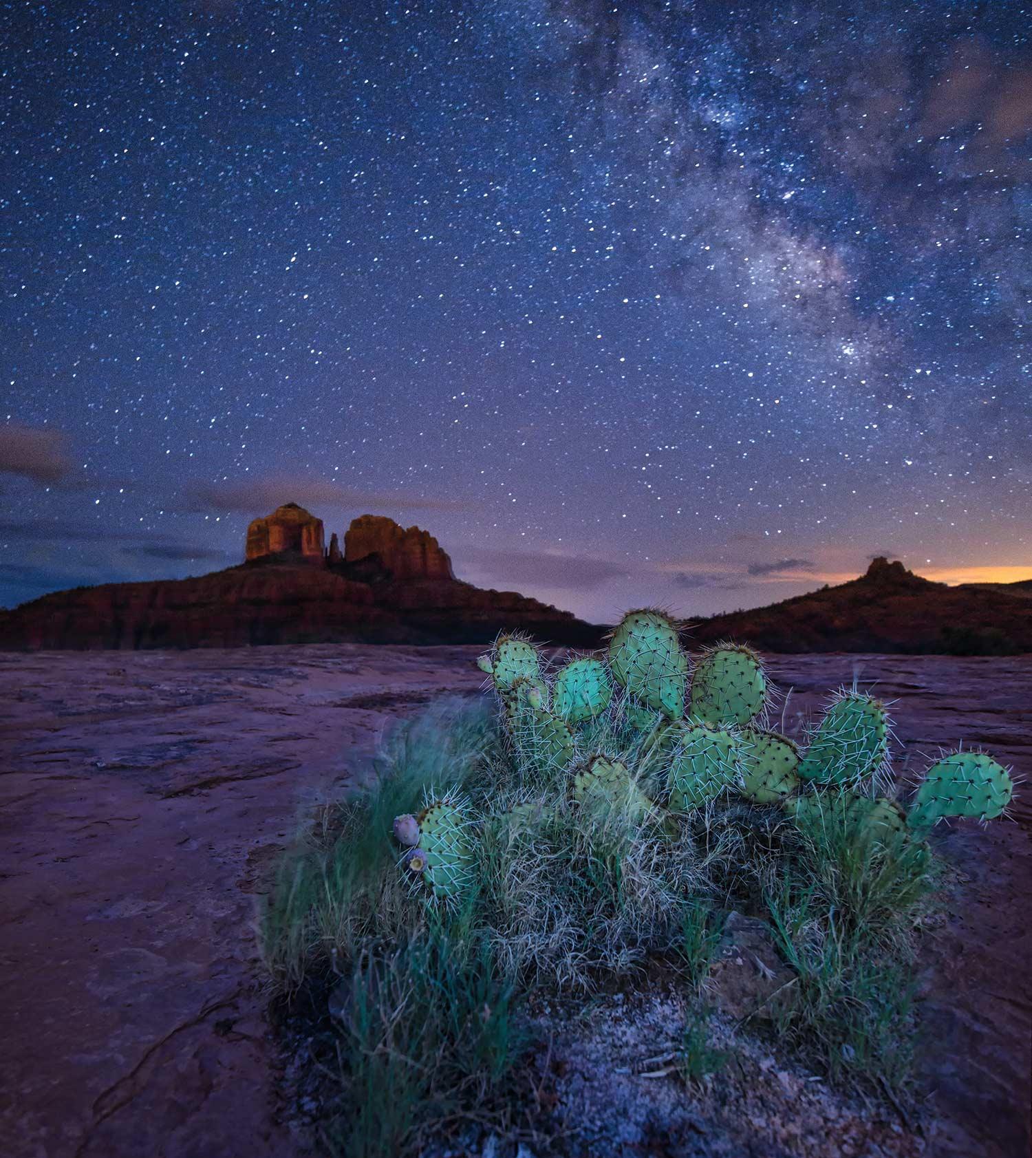 photo courtesy Adobe Stock Images