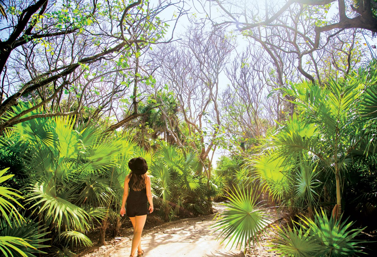 Photo courtesy Adobe Stock Images; Walking the pathways between the Mayan ruins in Tulum