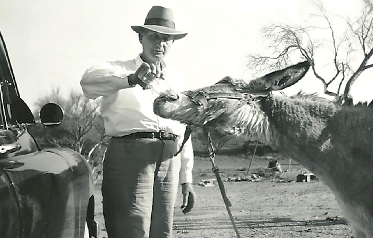 Jimmy the beer-drinking burro at Abels' Gas, 1930s.; Photo courtesy Sunnyslope Historical Society