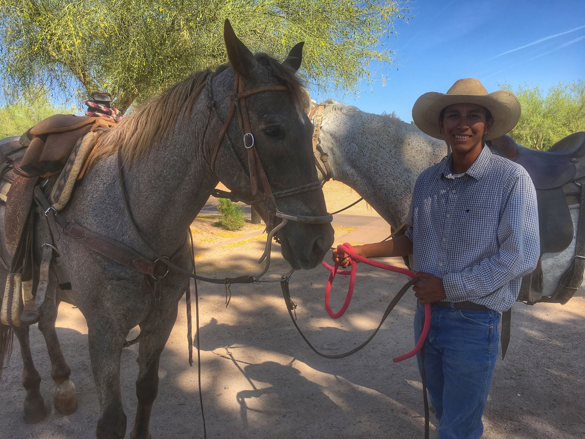 "Robert Pablo, the ""horse whisperer"""