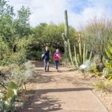5 Local Botanical Gardens to Check Out Right Now