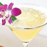 Pineapple Paradisio