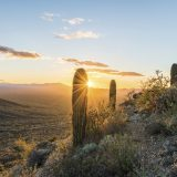 What to do in Tucson