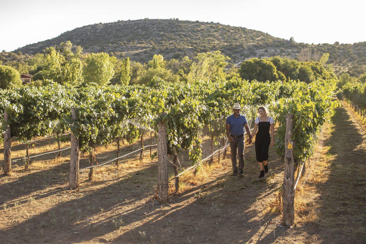 Arizona Wine Trails
