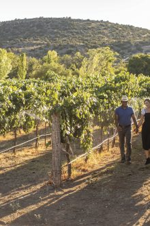 Arizona Wine Trails