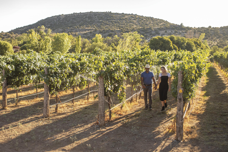 Strolling the vineyard at D.A. Ranch; Photo by Lipczynski; Models Colleen Hartnett, Sasha Hunter/Ford Robert Black Agency