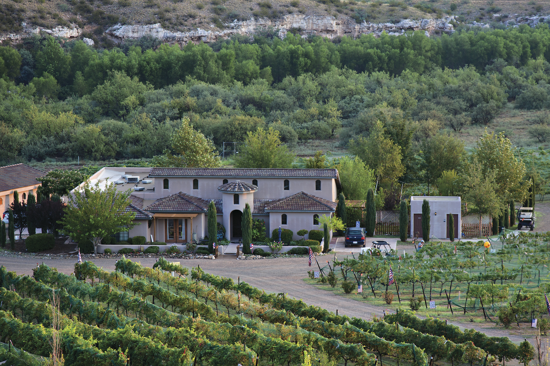 Alcantara Vineyards; Photo by Richard Maack