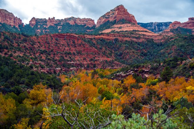 5 Places to See Fall Colors in Arizona
