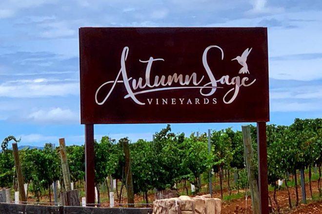 Pav on Juice: Autumn Sage Vineyards