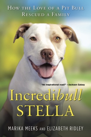 Read It: Incredibull Stella