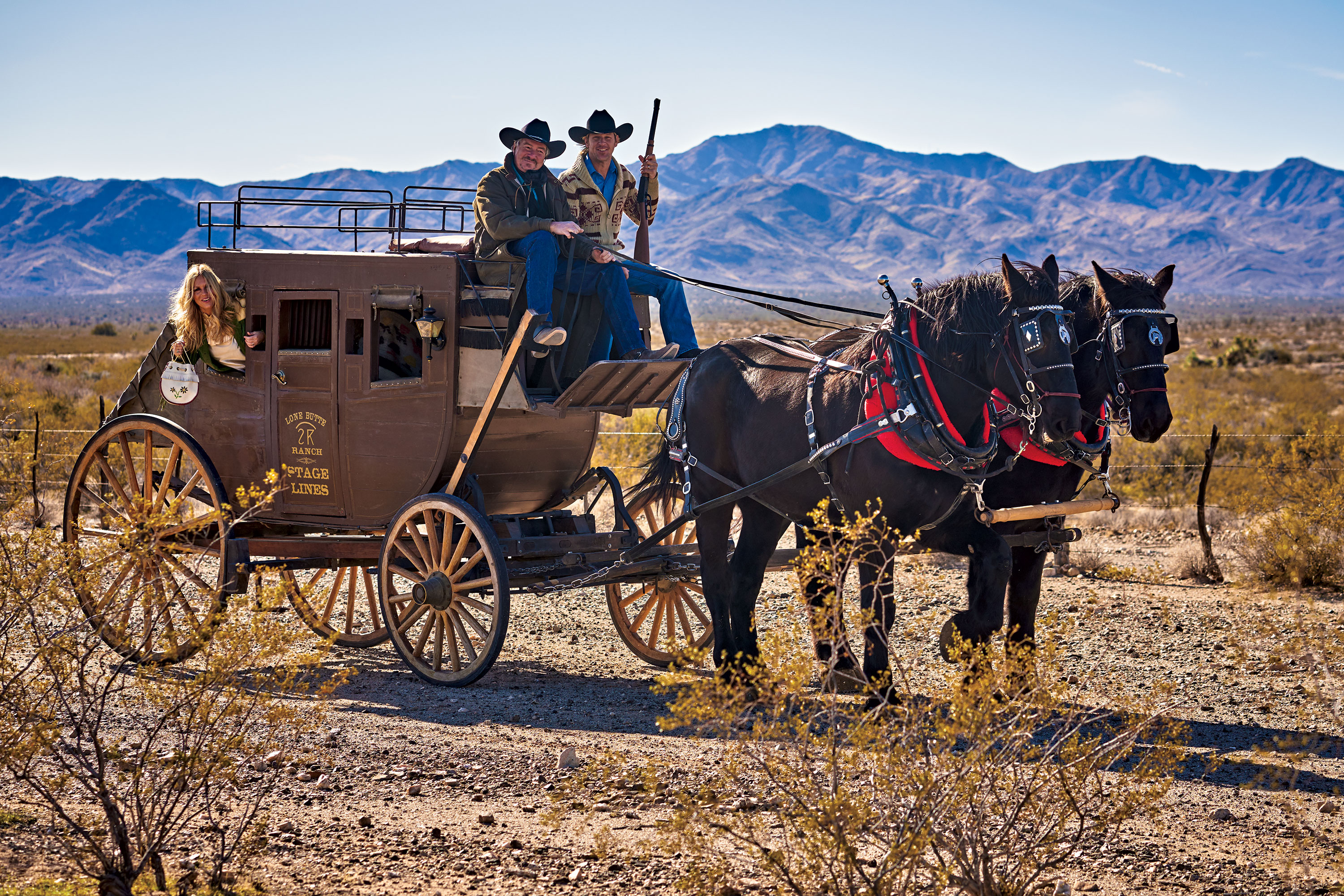 2020 Coral House Christmas Horse Wagon Ride 52 Weekend Adventures 2020 Edition   PHOENIX magazine