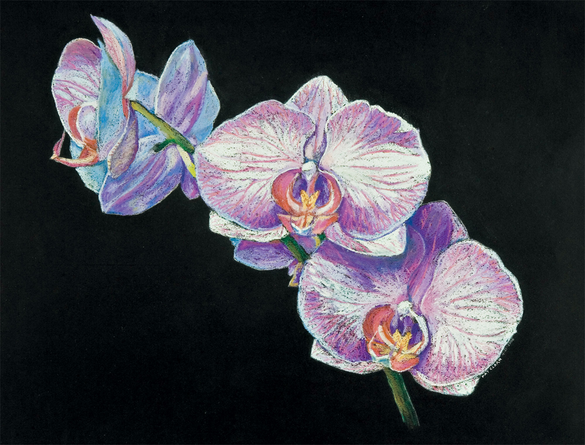 """""""Orchids,"""" pastel on paper, 2005. Clark painted this sensual stunner while living in Telluride prior to her St. Louis period. """"It was a transitional piece (as I was) moving away from horse portraits prior to exploring abstraction."""""""