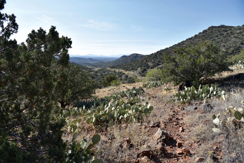 Kell Fox Trail