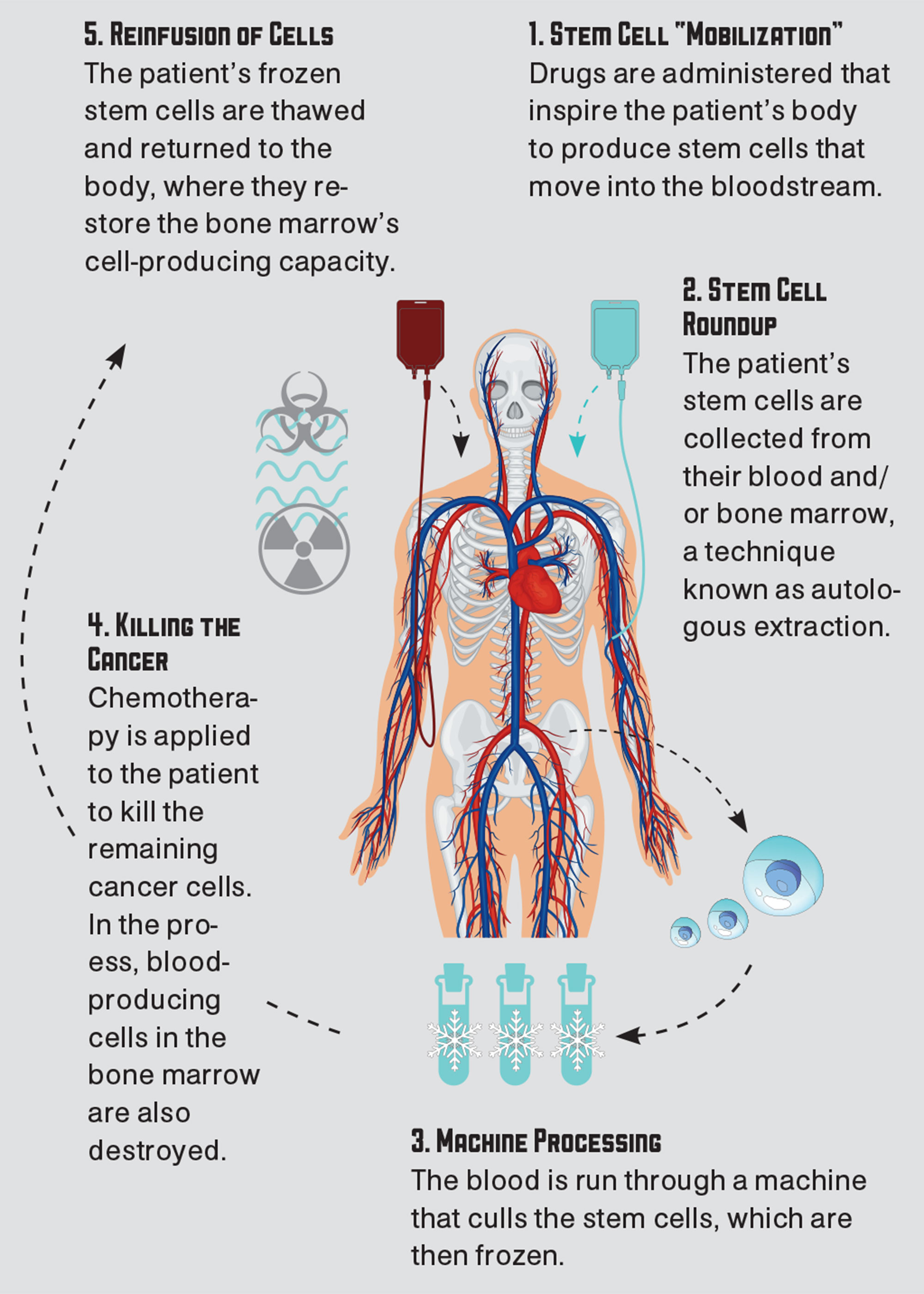 Infographics courtesy Adobe Stock Images