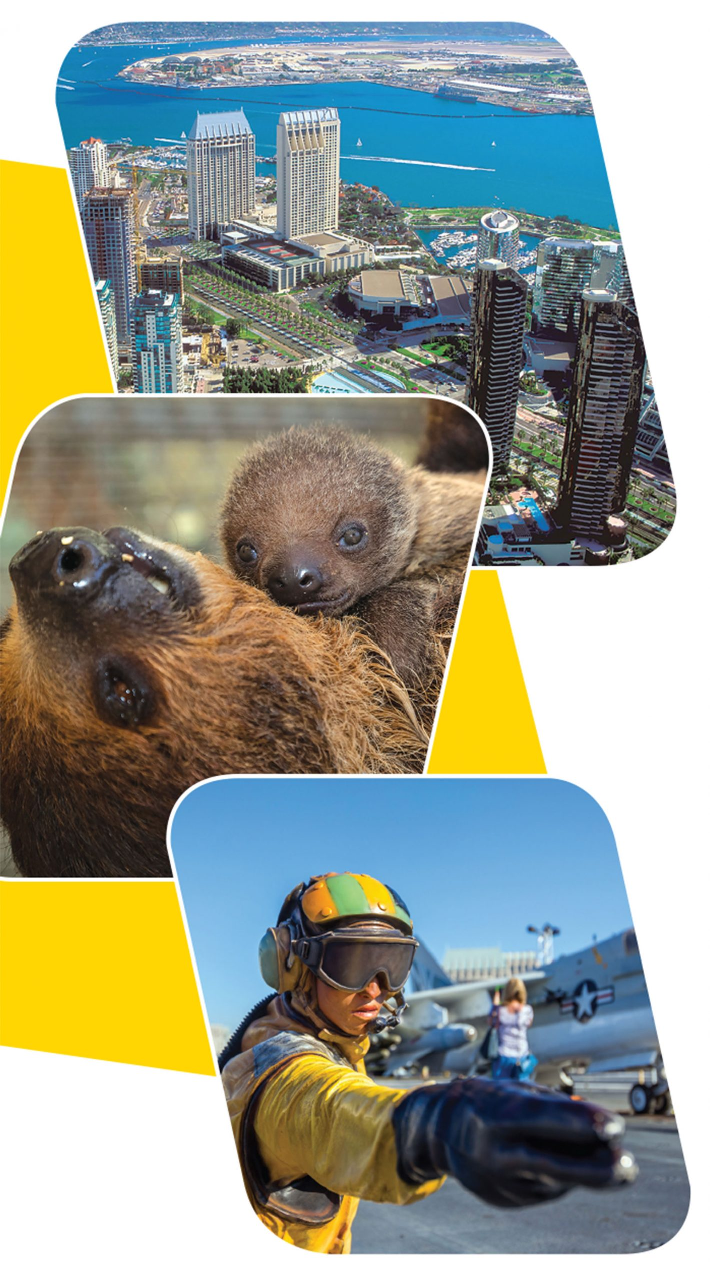 Top to bottom: Downtown San Diego and marina; mother and baby sloth at San Diego Zoo; USS Midway