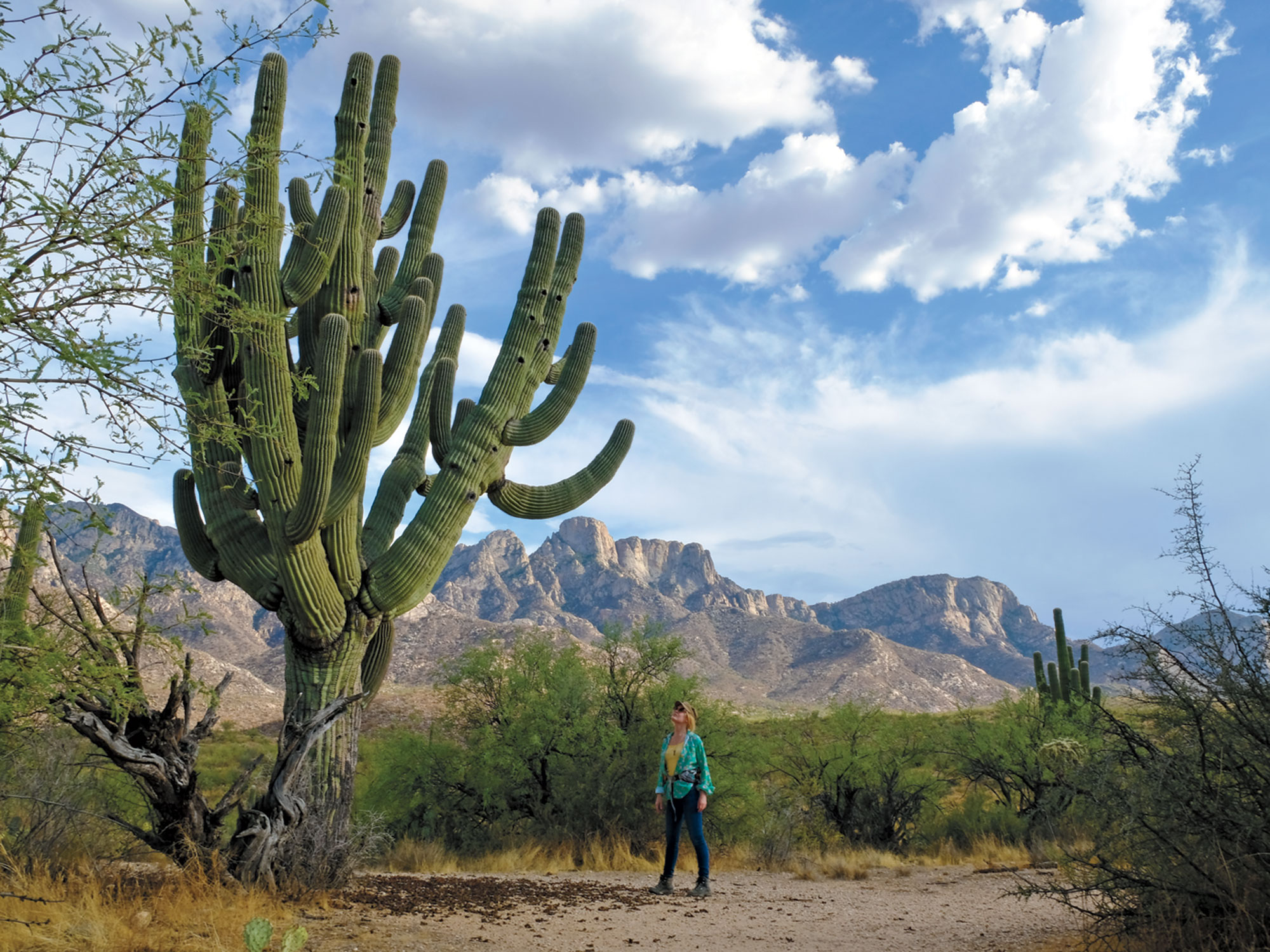 Catalina State Park; Photos by Eric Cox