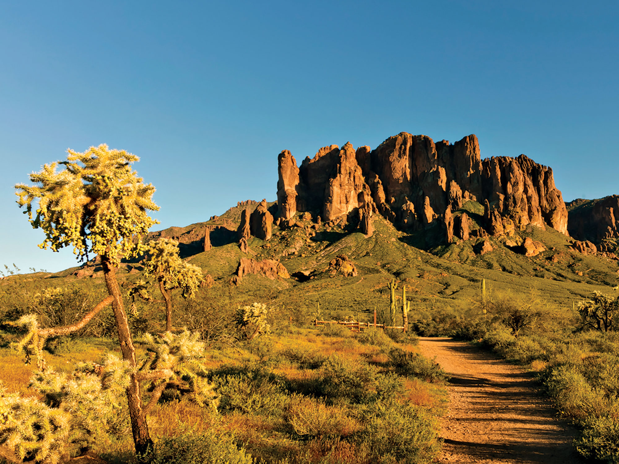 Lost Dutchman State Park; Photo courtesy Arizona State Parks & Trails