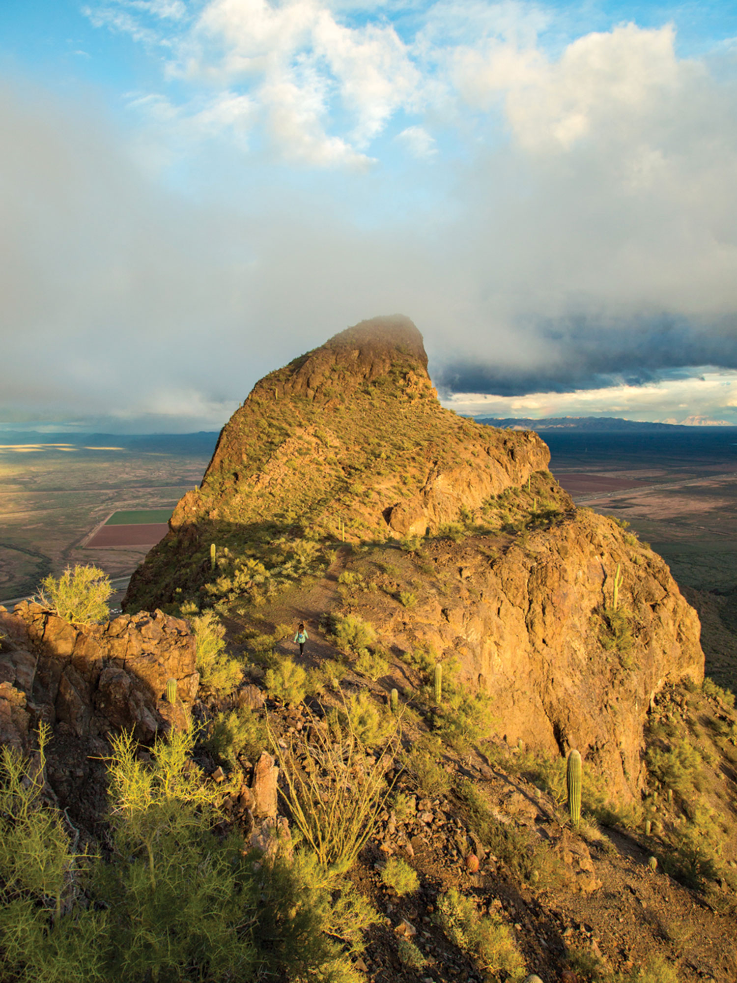 Picacho Peak State Park; Photo by Kevin Kaminski