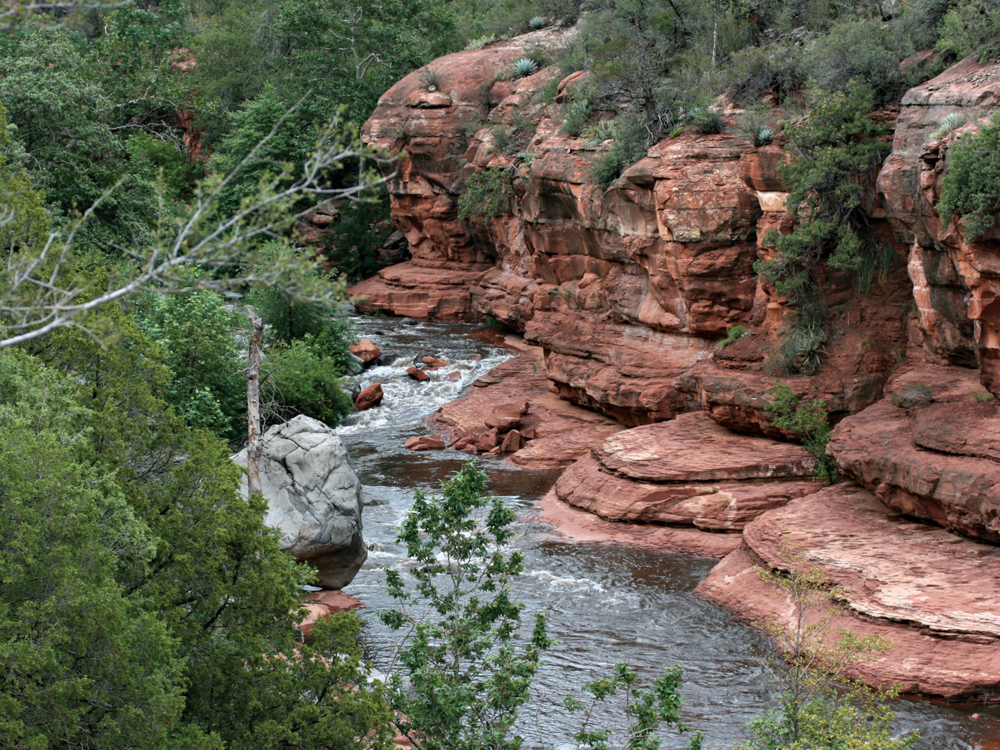 Slide Rock State Park; Photo Courtesy Arizona State Parks & Trails