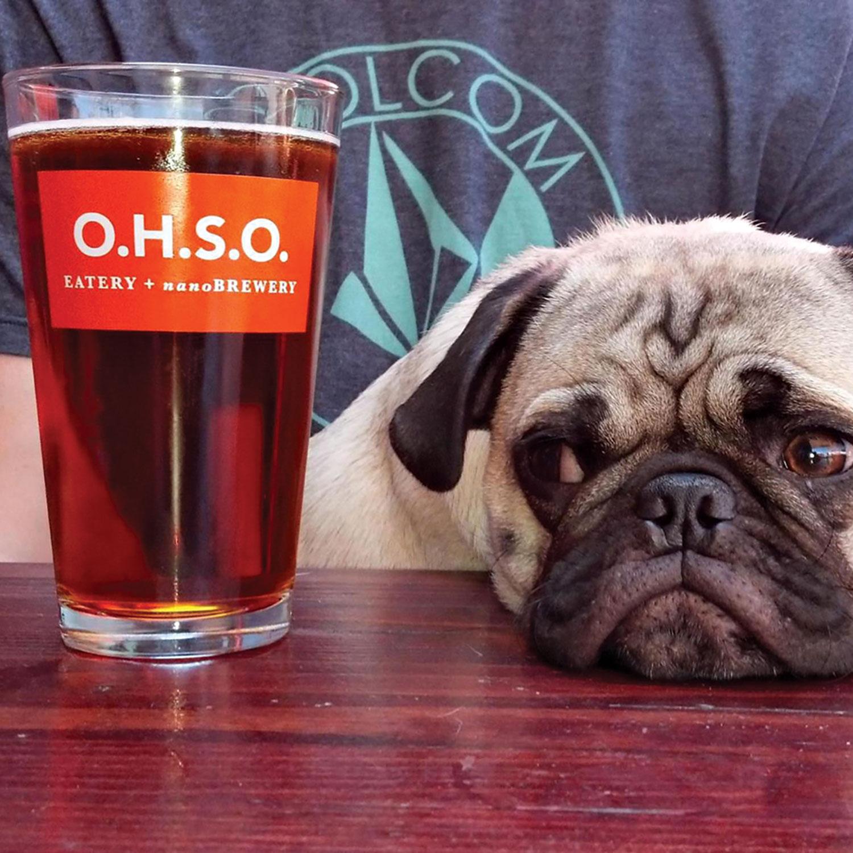 O.H.S.O. Brewery + Distillery