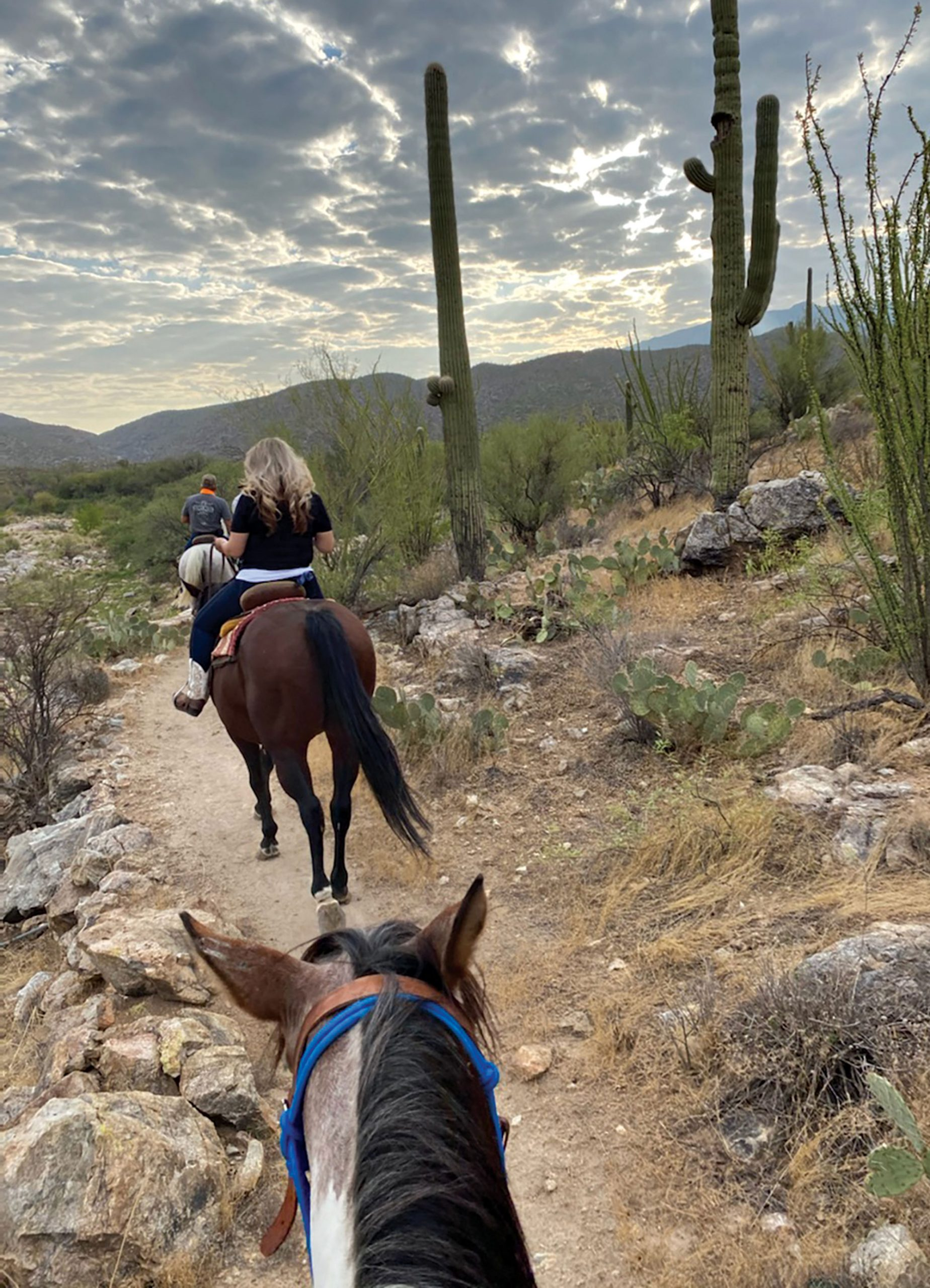 morning horseback ride; Photo by Madison Rutherford