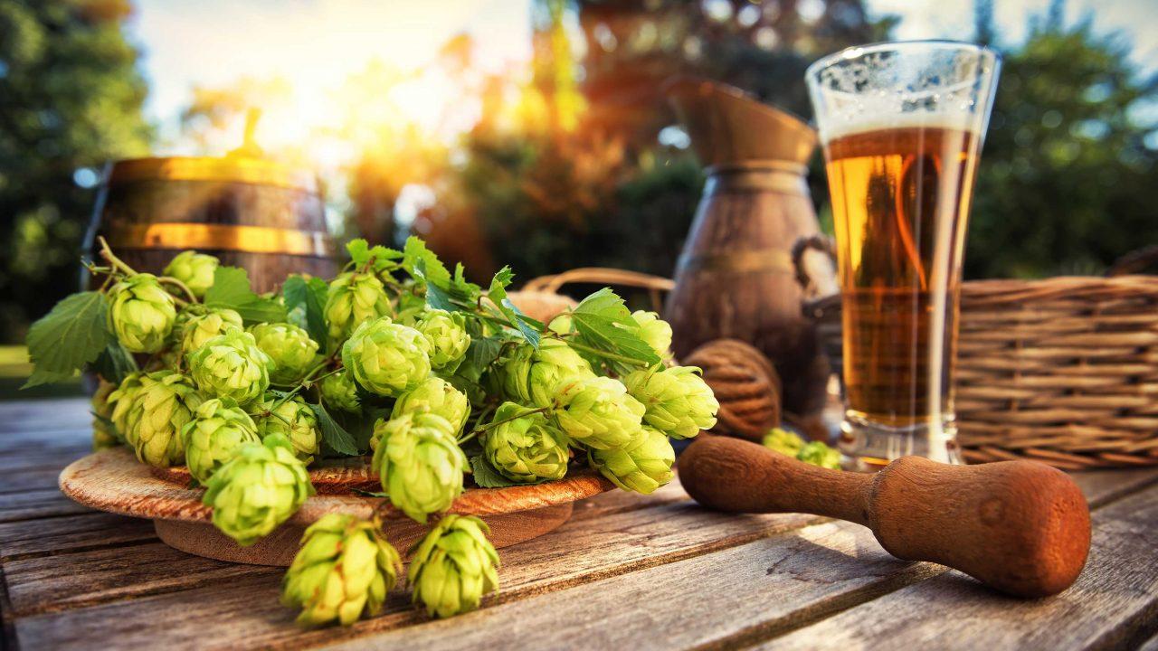 https://www.phoenixmag.com/wp-content/uploads/2020/10/hops-beer-featured-phot-1280x720.jpg