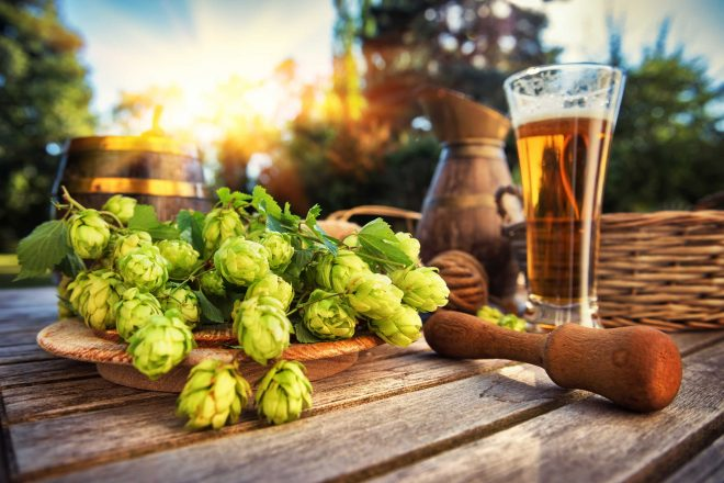 Thirsty Thursday Top 10: Ranking the new craft beer releases in Arizona this week