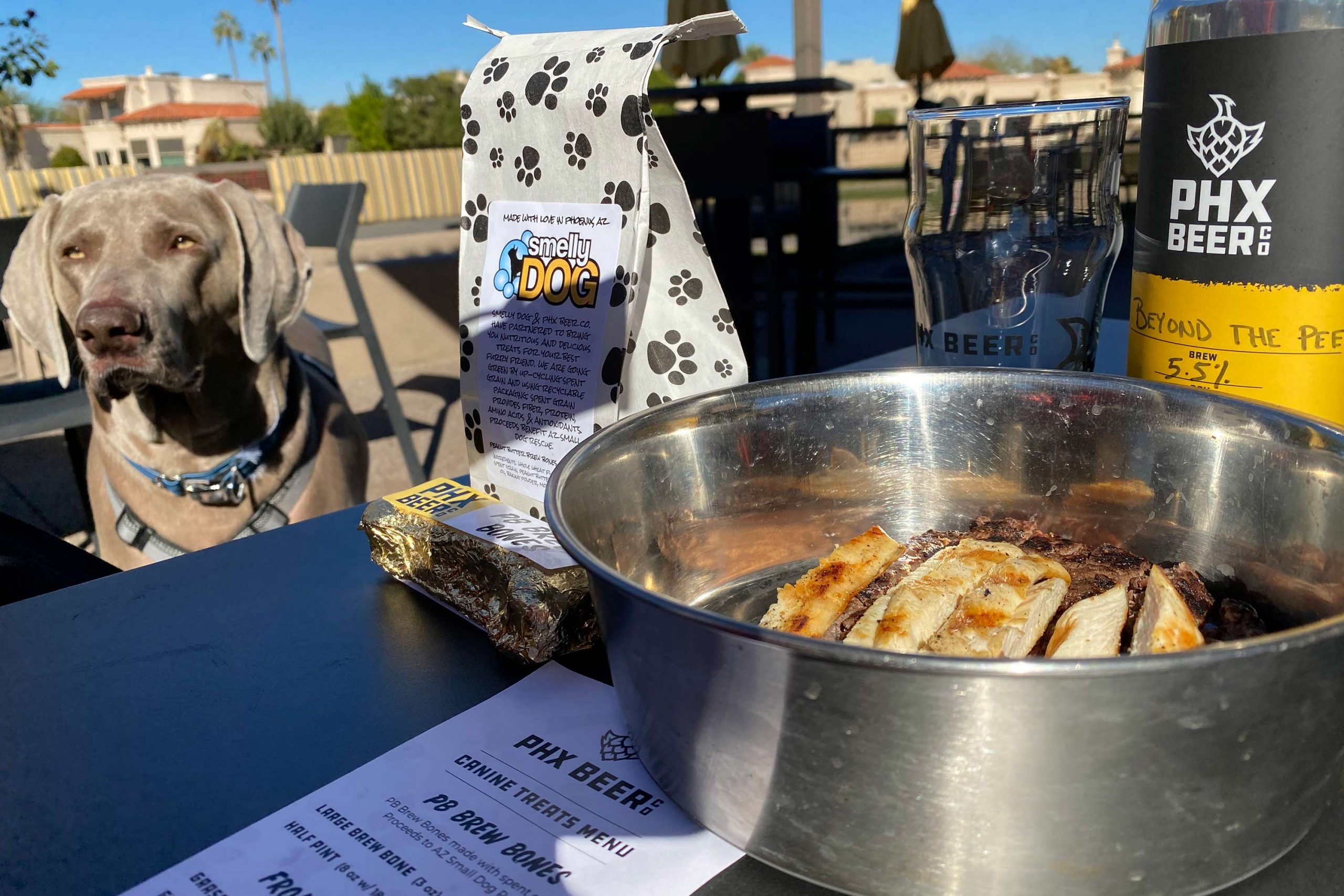 PHX Beer Co. Scottsdale location has the perfect patio for Murphy and his human.
