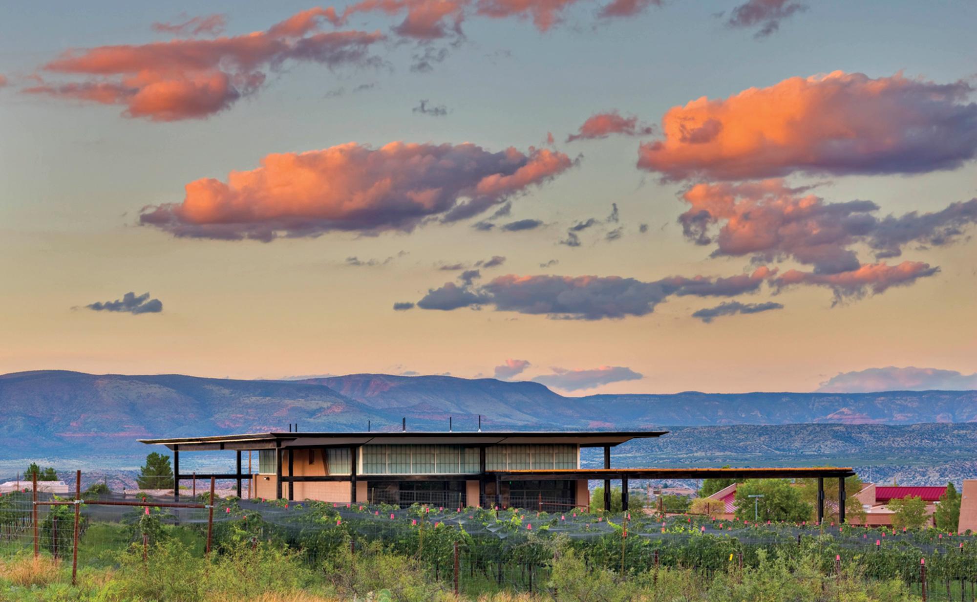 Southwest Wine Center; Photo by Patrick Cooley/Courtesy Southwest Wine Center
