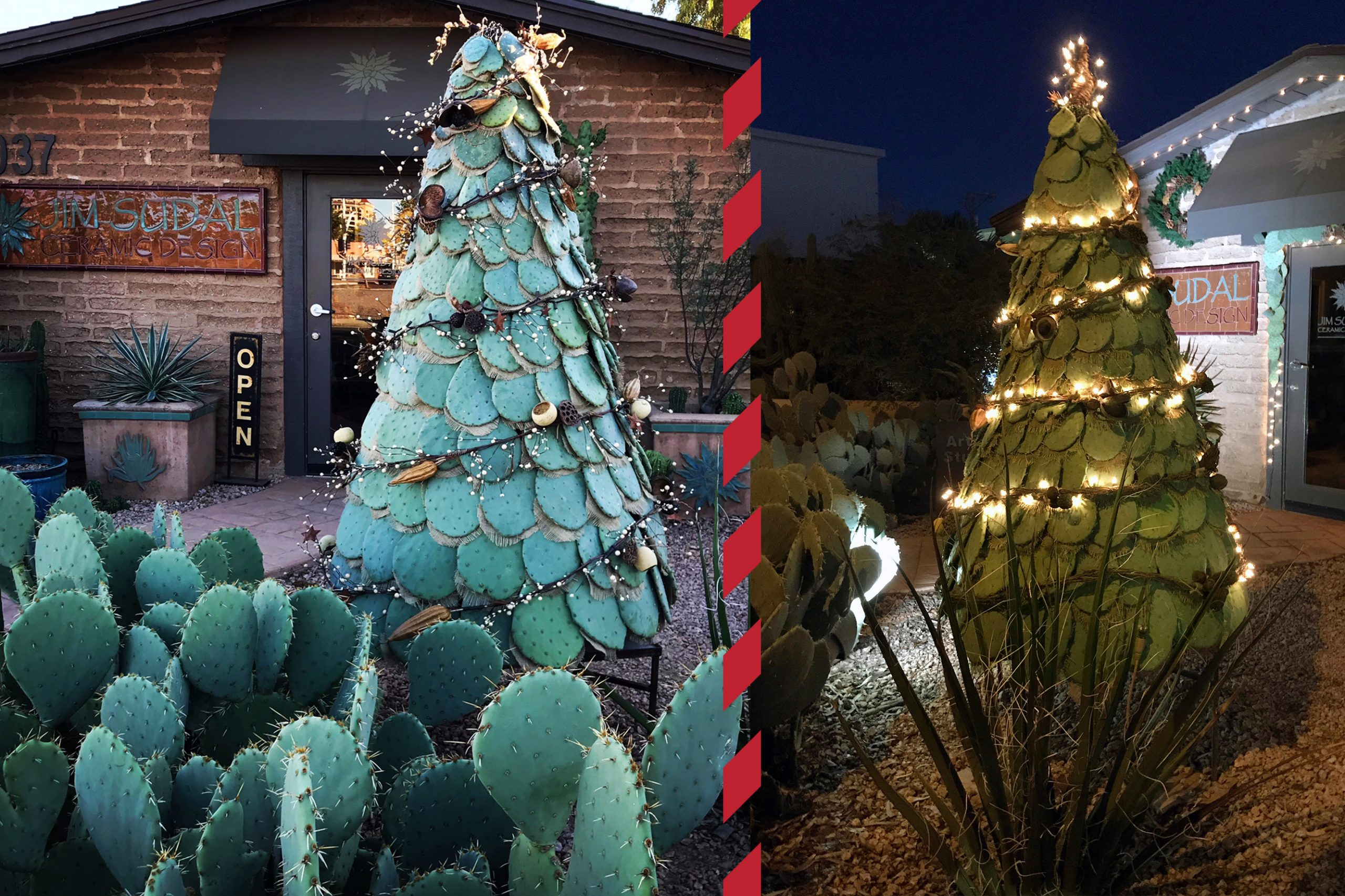Prickly Pear Christmas Tree