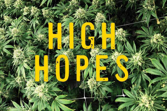 High Hopes: Will Prop 207's Aspirations of Empowering Minority Communities Go Up in Smoke?