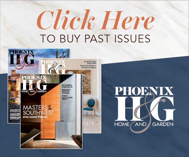 https://www.phoenixmag.com/wp-content/uploads/2021/03/PHGBackIssues_300x250.jpg