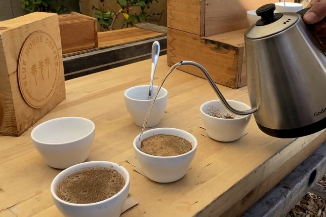 Cupping Season! Tips & Tricks for Tasting Exotic Coffee at Blue House Coffee
