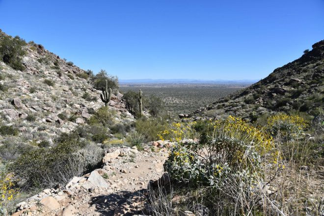 Mesquite Canyon Hike at White Tank Mountain Regional Park