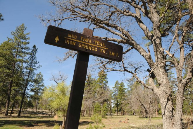 Hiking the Munds Park Trail System