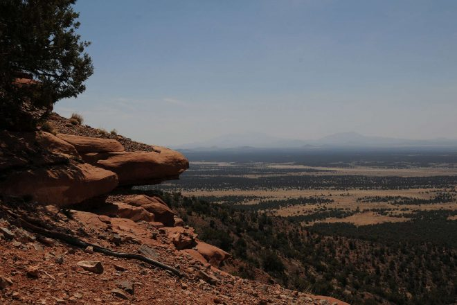 Red Butte Hike in the Kaibab National Forest