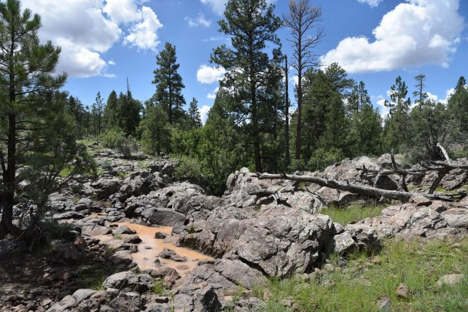 Hike the Stage Station Loop in Williams