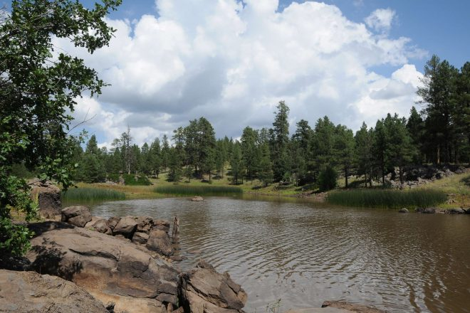 Whitehorse Lake Trails in the Kaibab National Forest