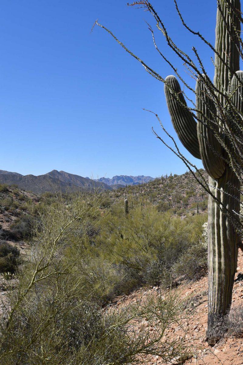 Arizona Trail Passage Gila River Canyons Hike